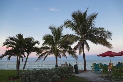 Vero Beach Palms and Ocean Setting