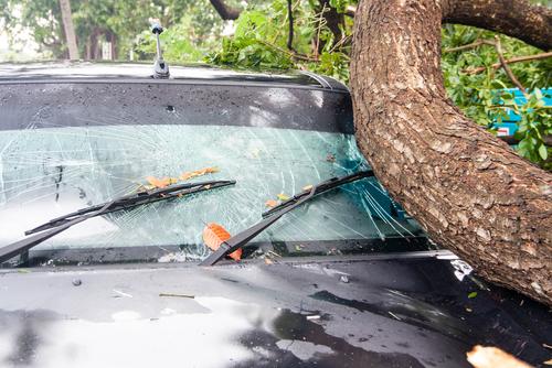 Oviedo real estate suffers hurricane damage.