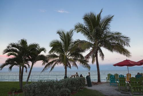 Vero Beach Palms and Ocean Setting