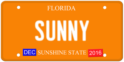 Jupiter luxury Homes License Plates